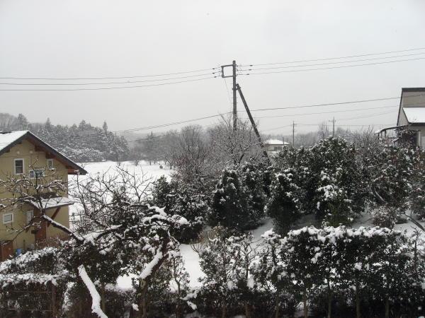 11雪景色01