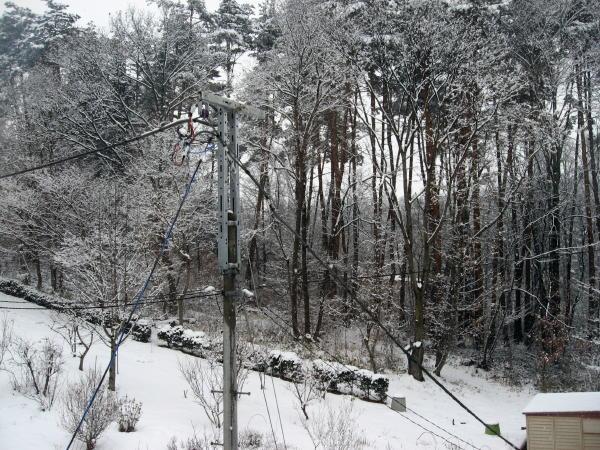 11雪景色02