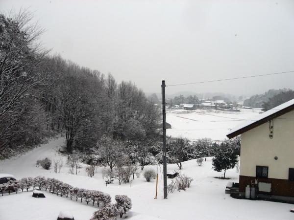 11雪景色07