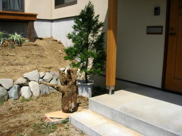 55木を植える08