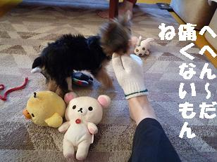 コピー ~ 2008_10139・16デジカメ0027