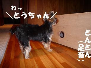 コピー ~ 2008_10279・16デジカメ0034