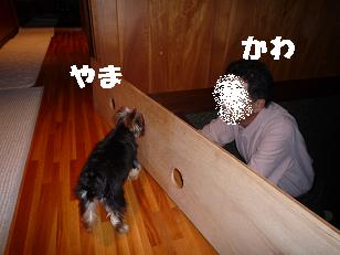 コピー ~ 2008_10279・16デジカメ0036