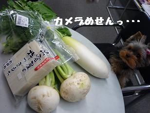 コピー ~ 2008_11089・16デジカメ0053
