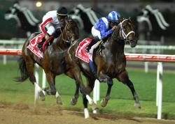 Dubai World Cup.INVASOR