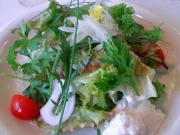 自家栽培の摘みたてハーブサラダ