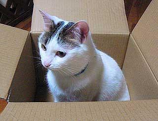 箱のサイズ003