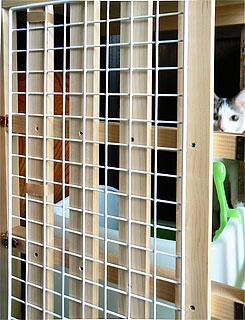 猫部屋02