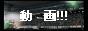 gooverthetop-douga-banner-01
