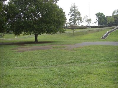 CIMG9498公園