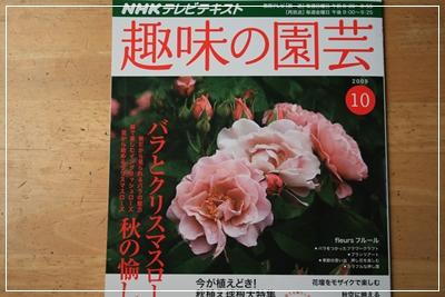 IMG_7708趣味の園芸