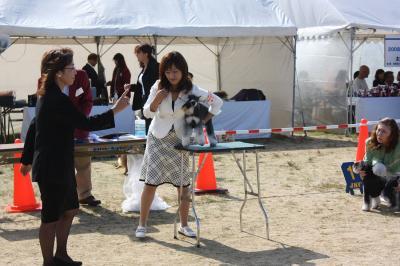 081013香川県連合ドッグショー8-s