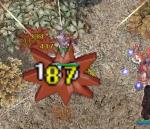 20061018154008.jpg