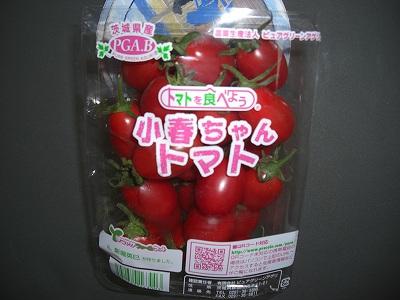 小春ちゃんトマト