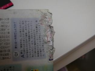 DSCN5246.jpg