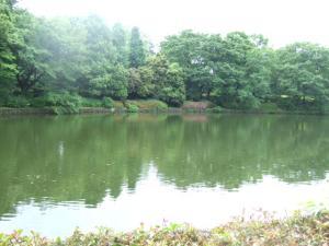 2006_0612inugao1633.jpg