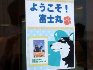 2006_0625inugao1714.jpg