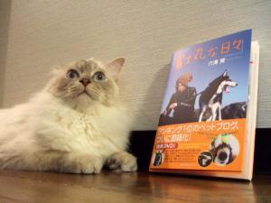 2006_0625inugao1734.jpg