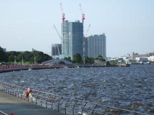 2006_0801inugao2026.jpg