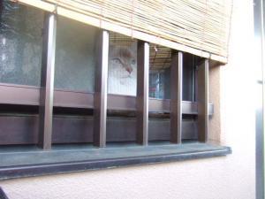 2006_0820inugao2177.jpg