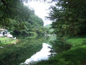2006_0821inugao2160.jpg