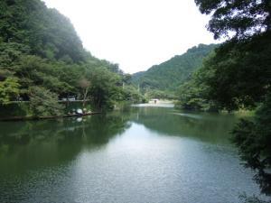 2006_0821inugao2161.jpg