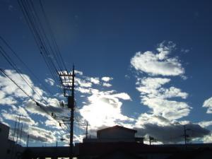2006_1008inugao2139.jpg