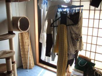 2006_1104inugao2141.jpg
