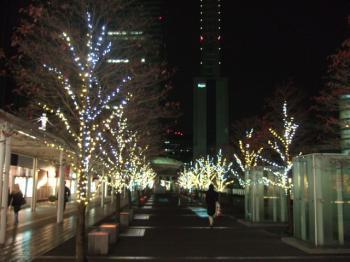 2006_1124inugao1943.jpg