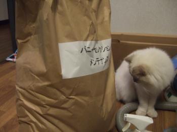 2006_1211inugao1992.jpg