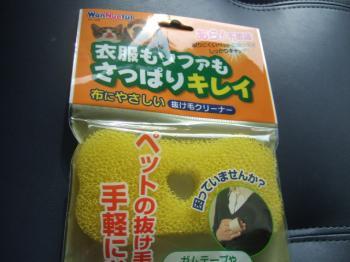2007_0108inugao2060.jpg