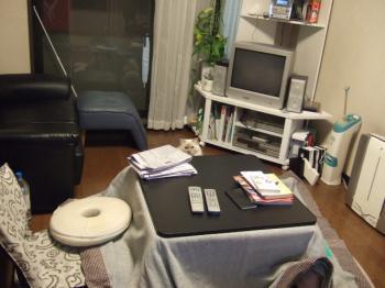 2007_0109inugao2059.jpg