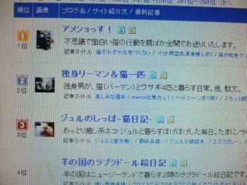 2007_0317inugao1715.jpg