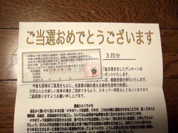2007_0404inugao1669.jpg