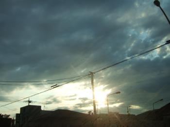 2007_0519inugao1611.jpg