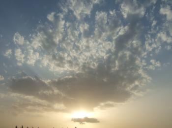 2007_0526inugao1524.jpg