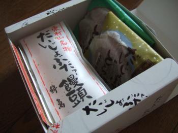 2007_0528inugao1464.jpg