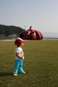 「赤かぼちゃ」 20080517 直島