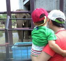 ゾウさんだよ~ 20080921 @レオマ