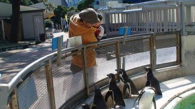 間近でペンギンさん★ @桂浜水族館