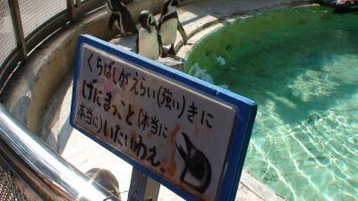 土佐弁だぁ @桂浜水族館