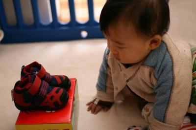 しゅうと 初めての靴との遭遇 20080127