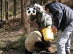 夫とパンダ2