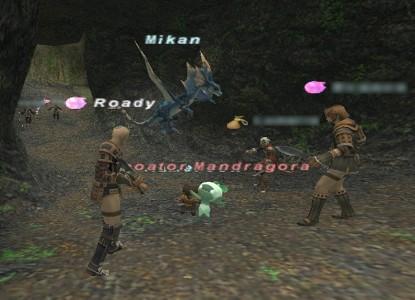 2007122702.jpg