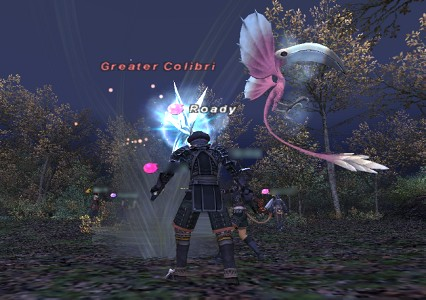 2008062002.jpg