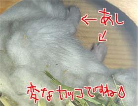060614_3.jpg