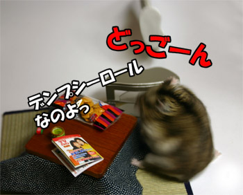 070207_5.jpg