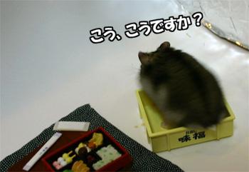 071107_1.jpg