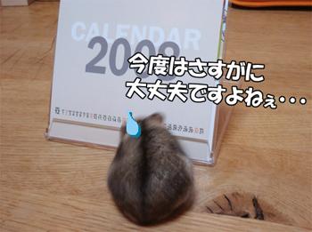 071212_2.jpg