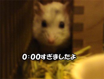 081023_2.jpg